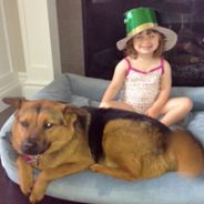 Kids & Dogs – They are CUTE!  How to make sure they are SAFE