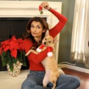Holiday Safety for Pets
