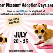 Summer Discount Adoptions at LA Animal Services