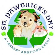 St. Pawtrick's Day at LA Shelters