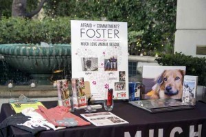 Foster table iphoto