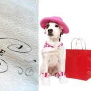 Shop and Adopt This Saturday at Anthropologie Beverly Hills!